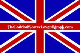 the london flower lover