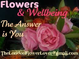 the answe is youflowers and wellbeing roses images