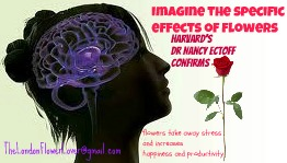 imagine the effect f flowers
