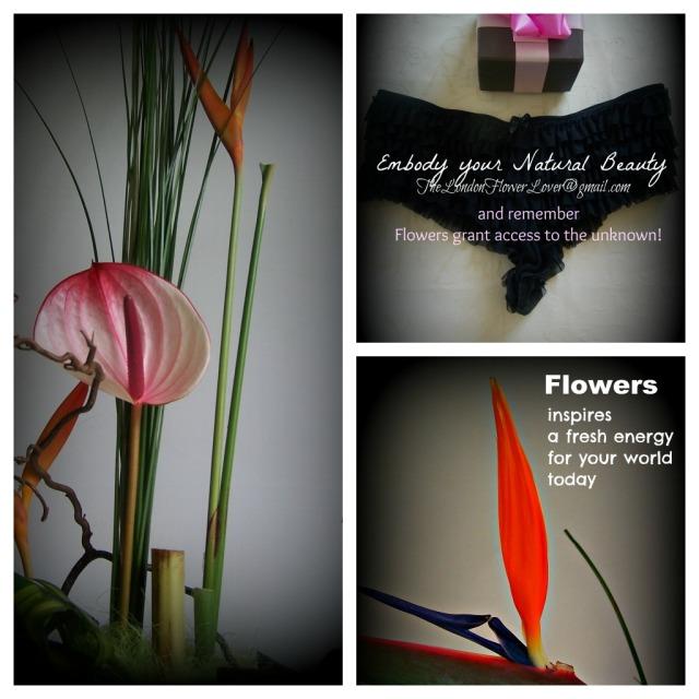 erotic flowers collage