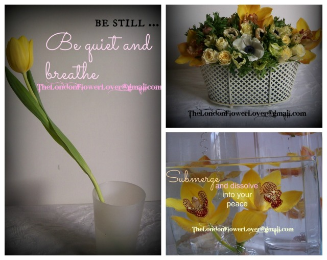 the london flower lover yellow cymbidium orchid collage