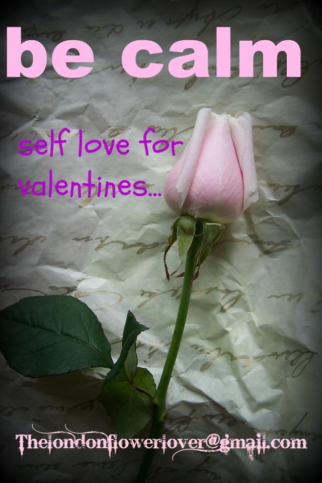 thelondonflowerlover pink rose