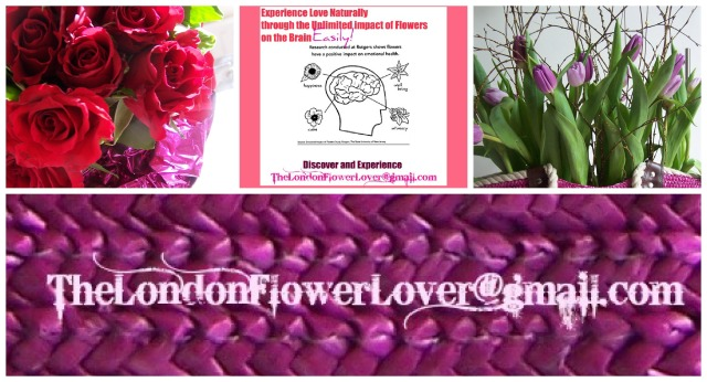 impact of flowers on the brain the london flower lover PicMonkey Collage