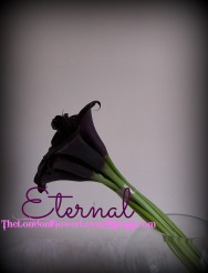 calla lilly peony eternal The London Flower Lover