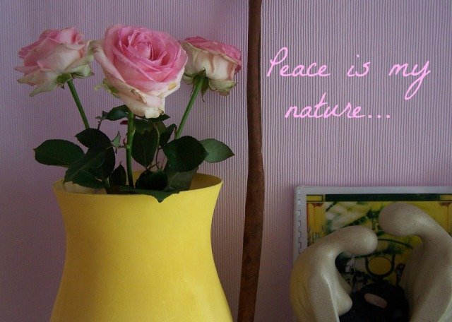 pink roses and yellow vase  peace is my nature