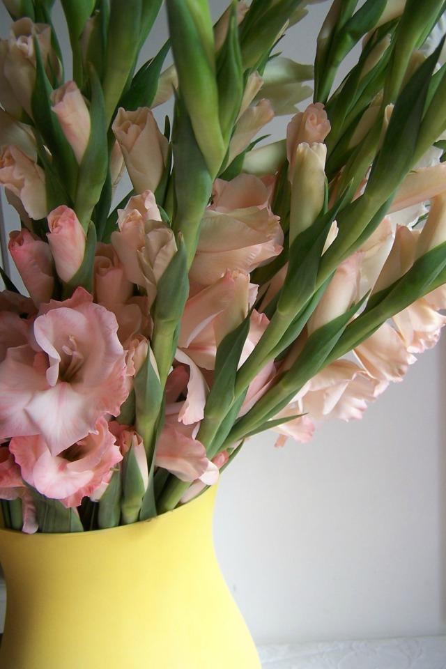 thelondonflowerlover gladioli in vase