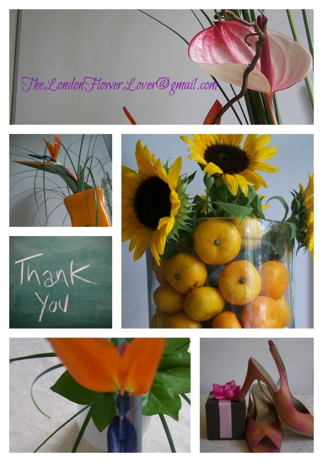 Thelondonflowerloverthankyou  again Collage