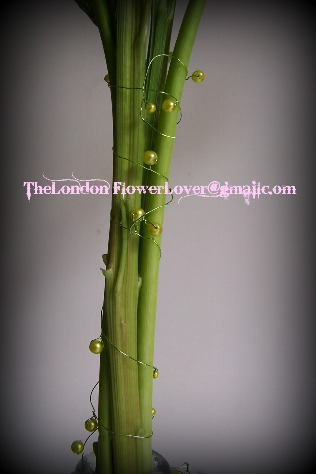 The London Flower Lover plant stems