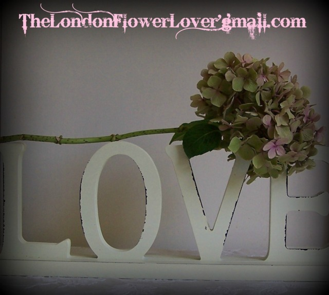 TheLondonFlowerLover love 2
