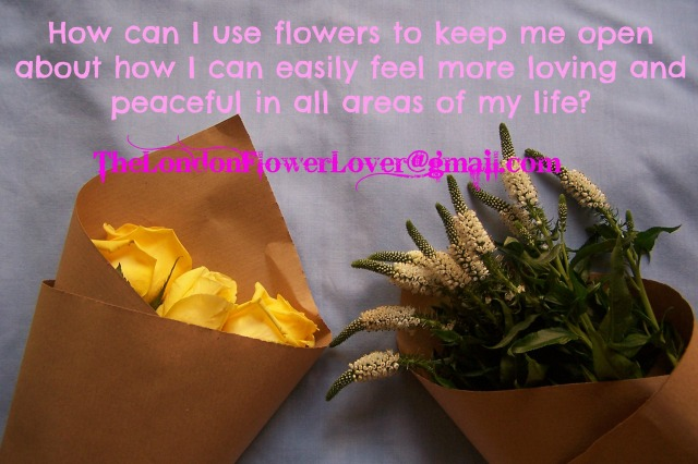 The London Flower Lover How can I use flowers to keep me open about how I can easily feel more loving and peaceful in all areas of my life