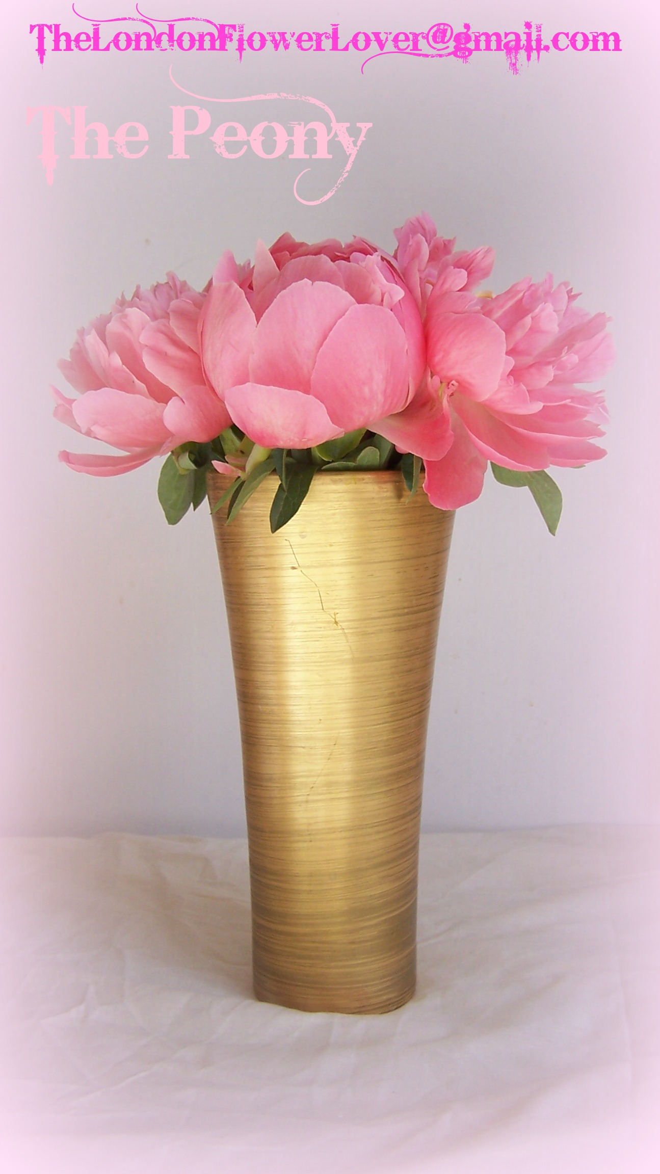 The Bride Of Wedding Flowers Is Here The Peony Flower Means Happy