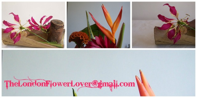 TheLondonFlowerLover@gmail.com tropical mix of flowers