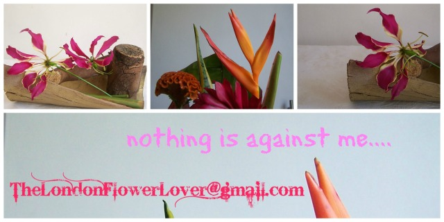 Nothing is against me The London Flower Lover @gmail.com tropical mix of flowers