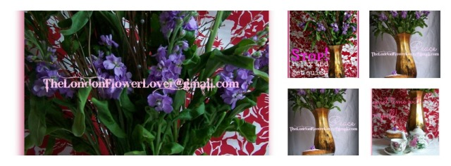 the london flower lover Peace white and lillac stock  Collage