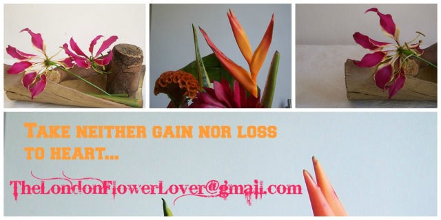 The London Flower Lover  Take neither gain nor los to heart @gmail.com tropical mix of flowers