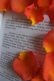 Het heru roses and book