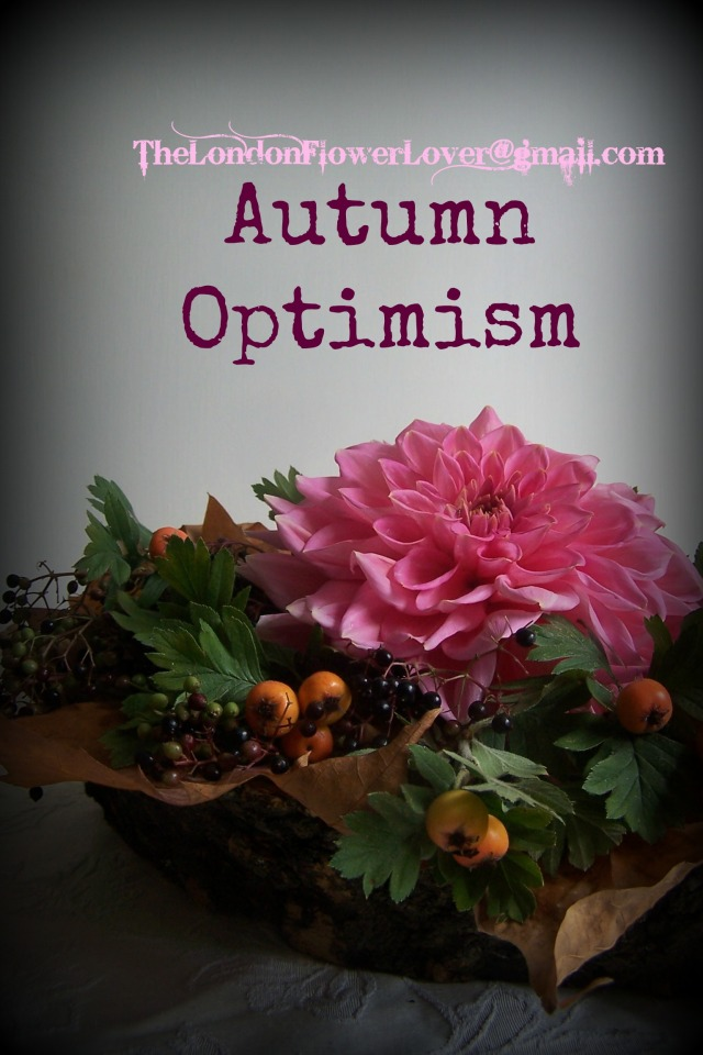 The London Flower Lover Autumn Optimism and harvest