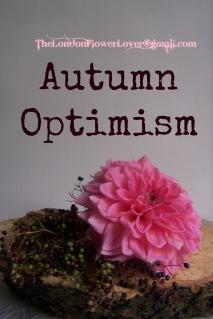 TheLondonFlowerLover Autumn Optimism
