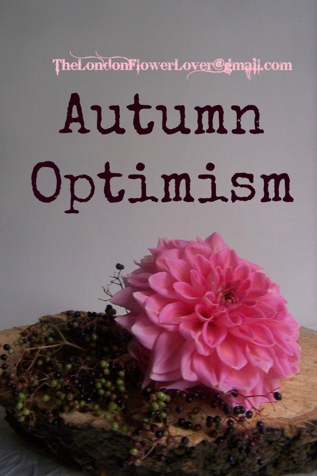 TheLondonFlowerLover Autumn Optimism
