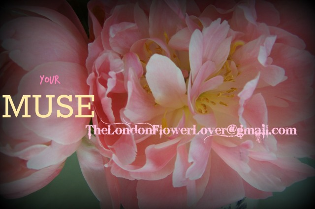 your muse the london flower lover