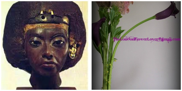 ancient wisdom beautiful flowers Collage