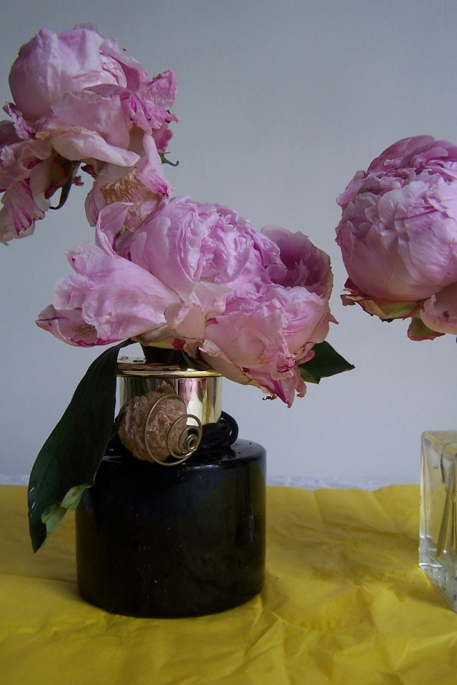 The London Flower Lover Shabby Chic Peony