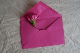 pink flower in pink envelope the London flower lover