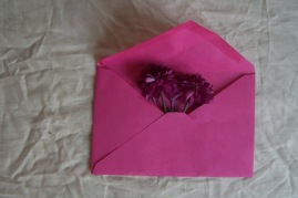 purple flower in a pink envelope the London flower lover