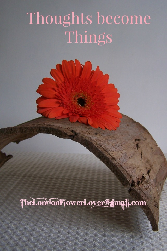 Thoughts become things Gerbera flowers The London Flower Lover