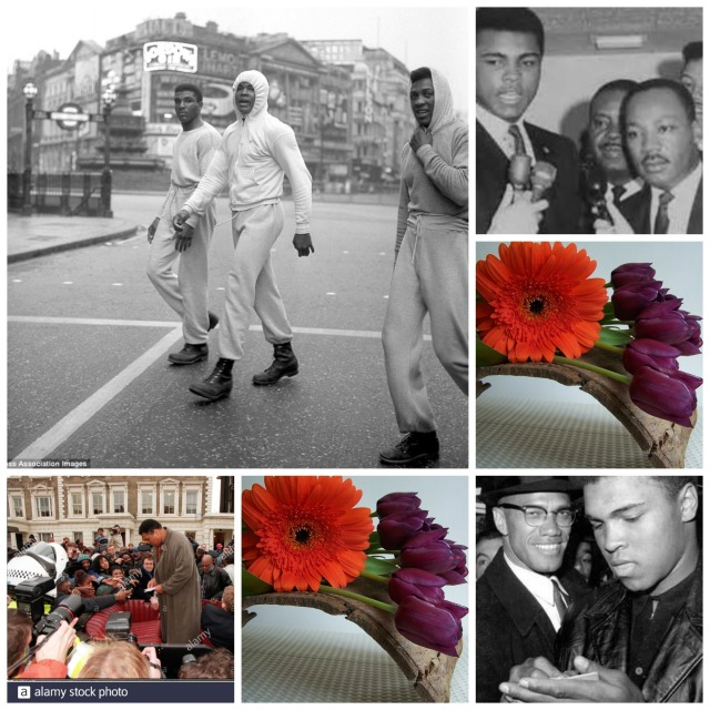 Ali In London and Civil Rights Flowers Collage