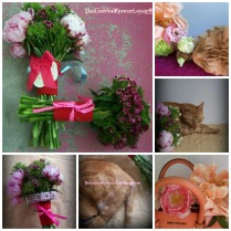 Summer flower and cat bouquet The London Flower Lover Collage