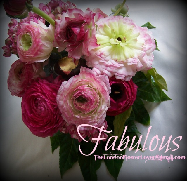 Pink flowers rannunculus the london flower lover fabulous