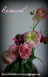 Renewal flowers the london flower lover