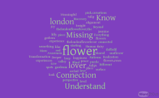 TheLondonFlowerLover transformer words