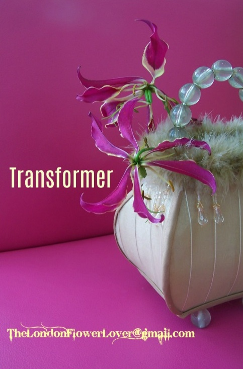 transformer thelondonflowerlover