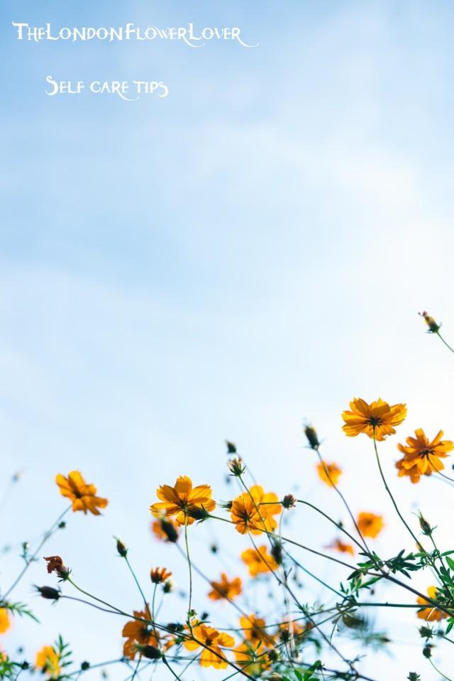 Self care tips the london flower lover