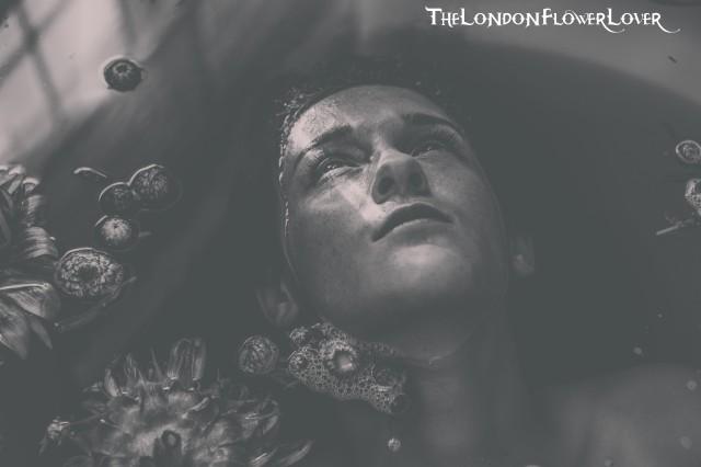 TheLondonFlowerLover (1)