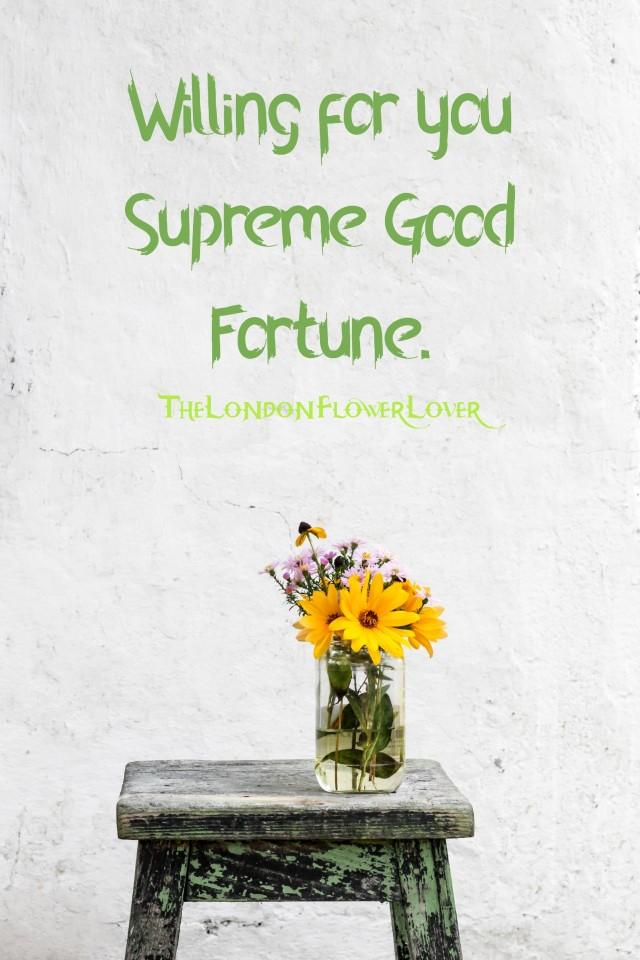 Supreme Good Fortune The London Flower Lover