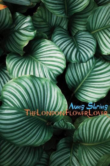 abundance aung shring the london flower lover