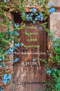 I decide to all my decision to shape my next steps the london flower lover